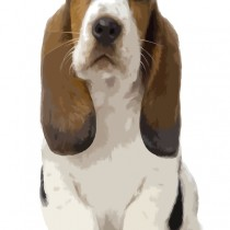 Basset Hound Puppy Large Size Painting