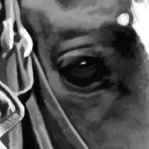 Detail of John Wayne @ True Grit #1 Large Size Painting
